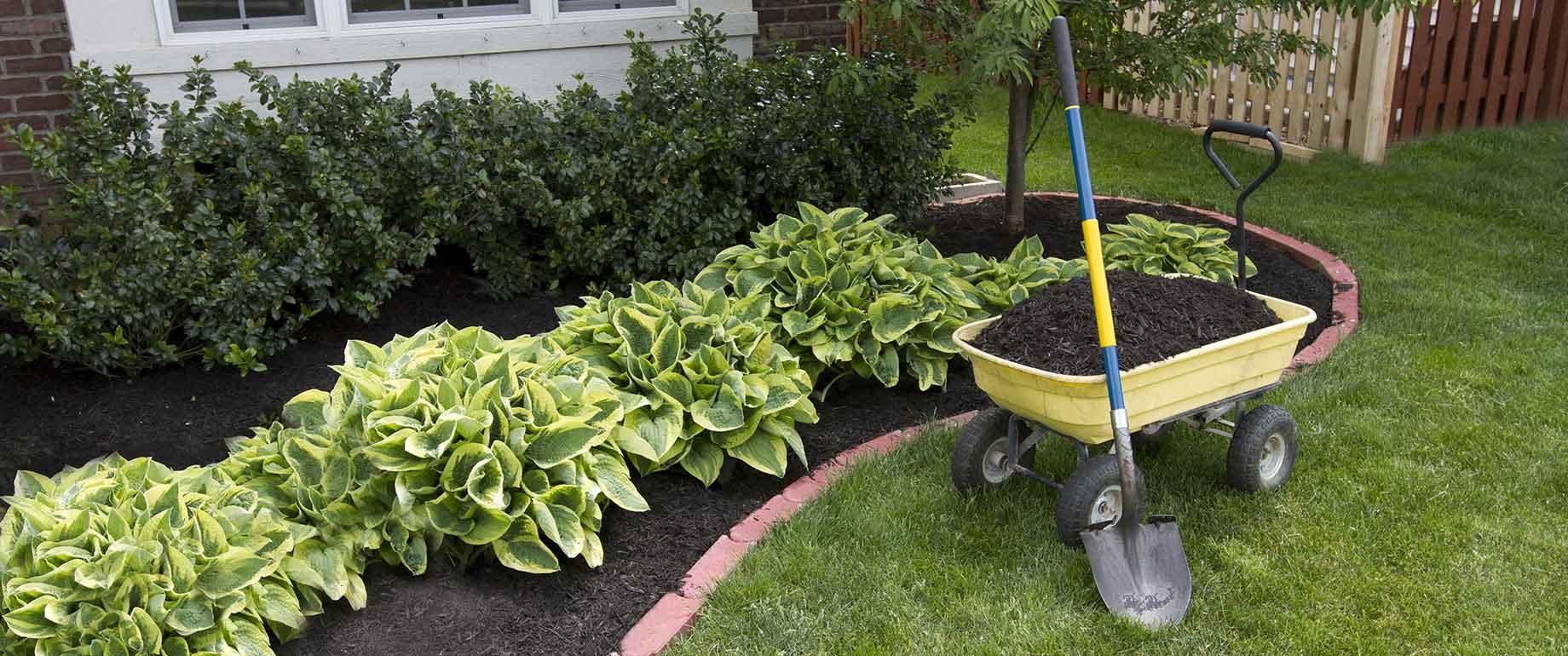 Gartenpflege2